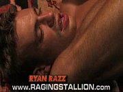 Sex bio aalborg thai massage smallegade