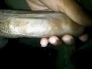 chacal jal&aacute_ndosela 2