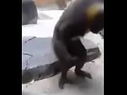 Massage sexuel marseille lokeren