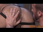 Homosexuell shemale facesitting real eskort