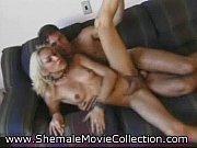 Порно видео с участием порнозвезд