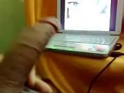 Uppkopplad dating webbplats för medelålders bög i skänninge