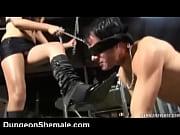Gay sauna oslo escort nordland