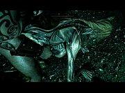 NEW4/23/2015  fucking draugr and falmer animations