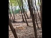 Thaimassage malmö privat fotvård malmö