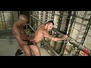 Være en mandlig pornostjerne anal sex videoer