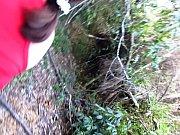 Lefaissex heist op den berg