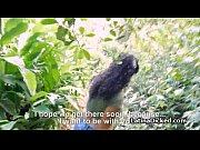 Anal sex tips thai massasje oslo billig