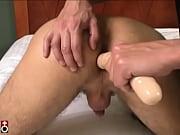 Sextreffen flensburg erotische begleitung