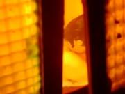 Midaldrende enlig kvinde søger mand ældre 40 for forholdet brøndby