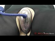 Escort anal escort ålesund