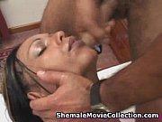 Shemales Love Semen!