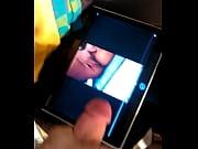 Planqwebcam com freienbach