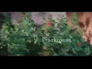 ---telugu full length hot movie - sontilli kotha.
