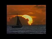 maydon voyage jackiesuave