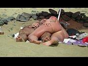 Sandfly Dune Dreamin&#039_ 16 Beach Voy Season!