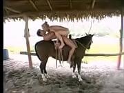 em cima do cavalo