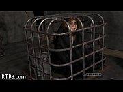 Callgirl koblenz hamster sex website