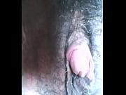 hermafrodita gozando clit&oacute_ris gigante squirting big clit cum