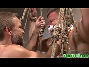 Vip sauna mannheim secufix fixierung
