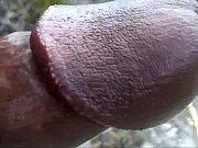 Sihteeriopisto forum naisen ejakulaatio