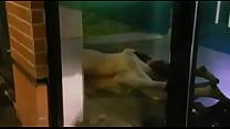 Pareja teniendo sexo en banco BANESCO