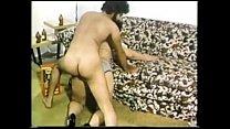 The Great Pornstars Cut - Vanessa del Rio - Vol... thumb