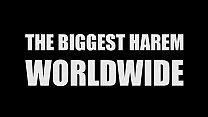 Biggest Harem Fuck Worldwide