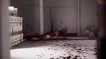 LEGENDADO (PT-BR) KUNOICHI 2: FALL OF THE SHIRI...