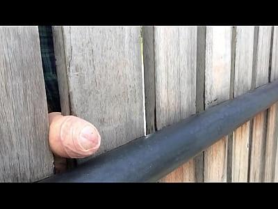 FenceFuck