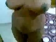 Brudar som vill knulla shemale homosexuell facesitting