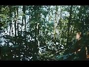Walerian Borowczyk - Le Bete