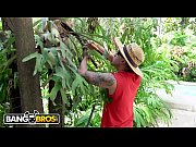 thumb    Gardener  Bruno Dickemz Fucks Latina Pornstar Valerie Kay