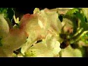 Fille sexy galerie jeune salope francaise