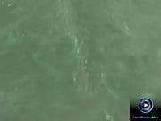 Danse nue xxx sexe baise video gratuit baise qui exite
