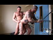 Gaykontakt malmö homo eskort