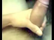 Paisa mostrando su verga