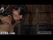Hamster porno sex tropical island sex