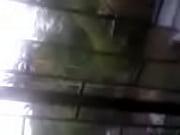 Salope à toulouse salope en jupe moulante
