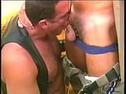 Muscular bear in leather chaps gets his cock slurped by police