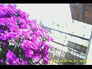 Silhouette frankfurt erotikshop landshut