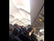 Paja en el Avion