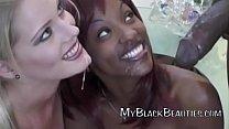 Amazing Black Beauties