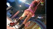 skirts short pink - pasion de Bailarinas