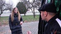 Czech Pick up Gets Rammed Hard and Ditched on a Field Vorschaubild