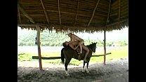 At the ranch Vorschaubild