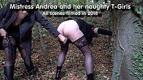 Трансвистит гаспожа и ее рабы видео