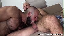 Hunky bear slammed bareback after foreplay