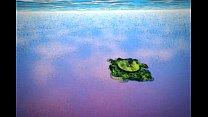 Paradise Island - Jcalin