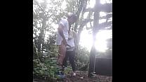 Juguemos en el bosque...